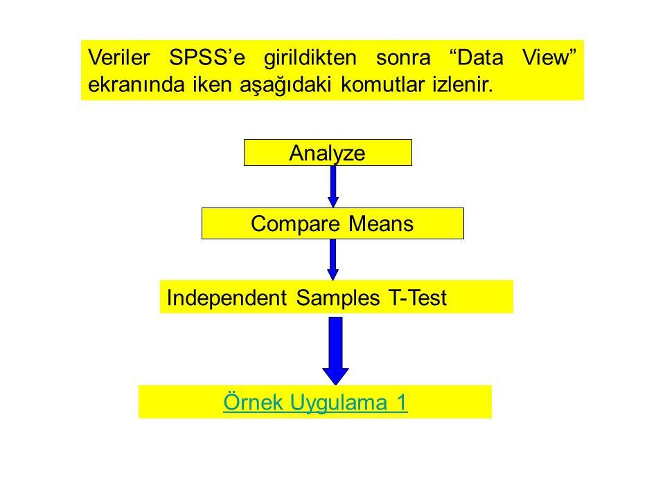 Veriler SPSS'e girildikten sonra Data View ekranında iken aşağıdaki komutlar izlenir.