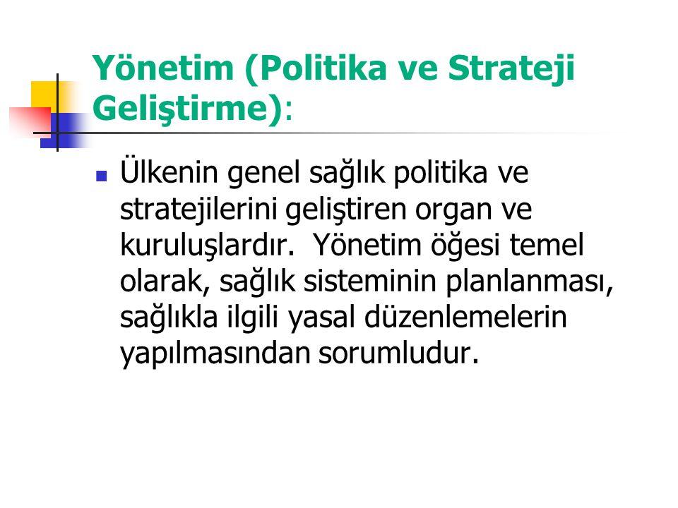 Yönetim (Politika ve Strateji Geliştirme):
