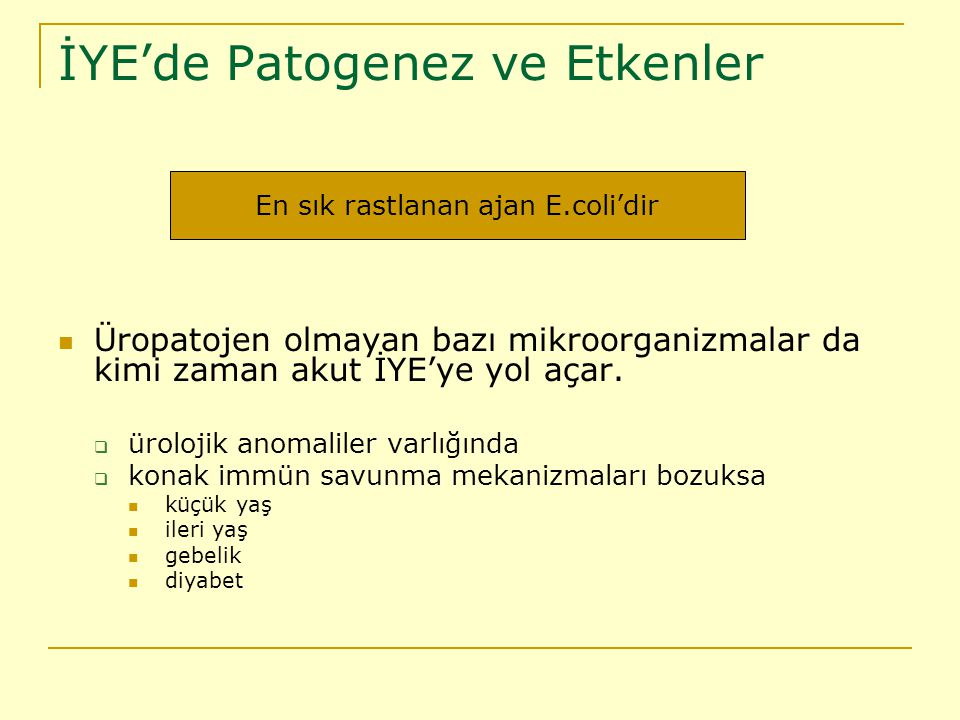 İYE'de Patogenez ve Etkenler