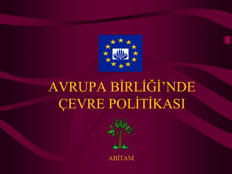 AVRUPA BİRLİĞİ'NDE ÇEVRE POLİTİKASI
