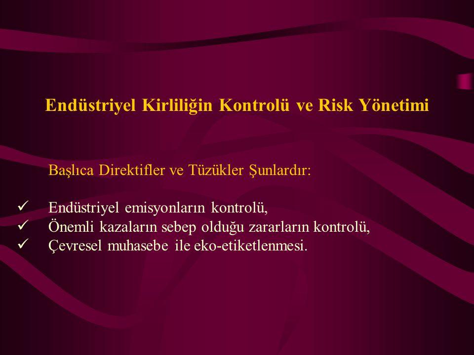 Endüstriyel Kirliliğin Kontrolü ve Risk Yönetimi