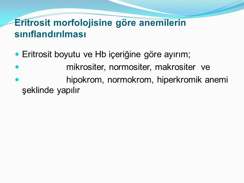 Eritrosit morfolojisine göre anemilerin sınıflandırılması