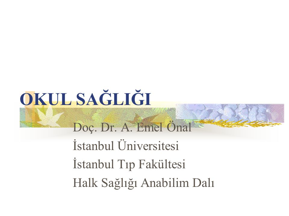 OKUL SAĞLIĞI Doç. Dr. A. Emel Önal İstanbul Üniversitesi