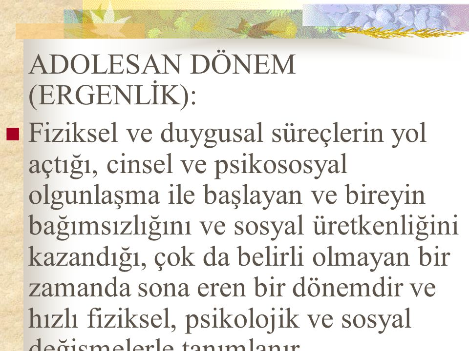 ADOLESAN DÖNEM (ERGENLİK):