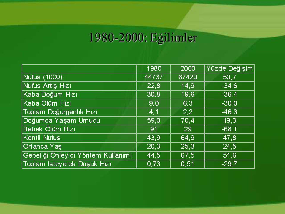 1980-2000: Eğilimler 17