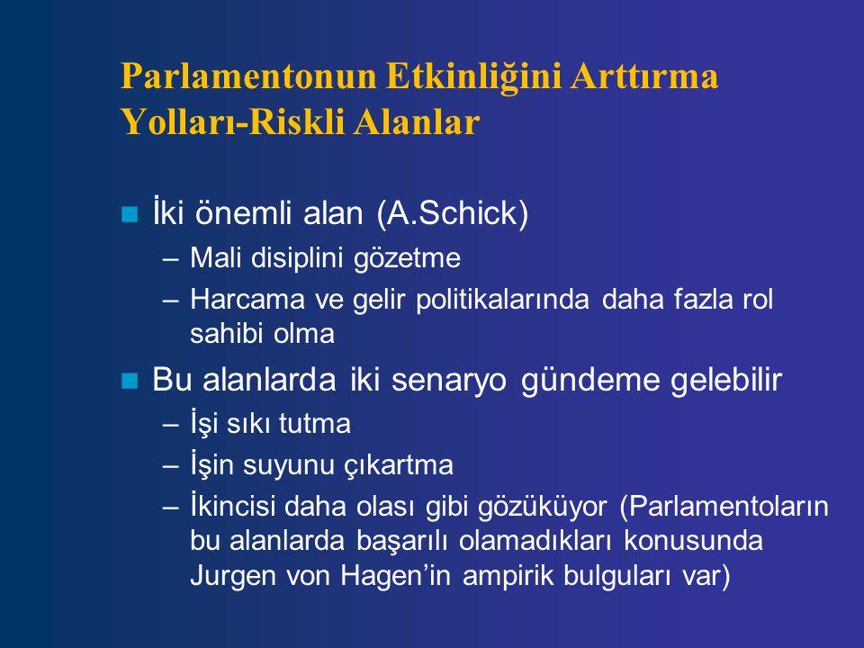 Parlamentonun Etkinliğini Arttırma Yolları-Riskli Alanlar