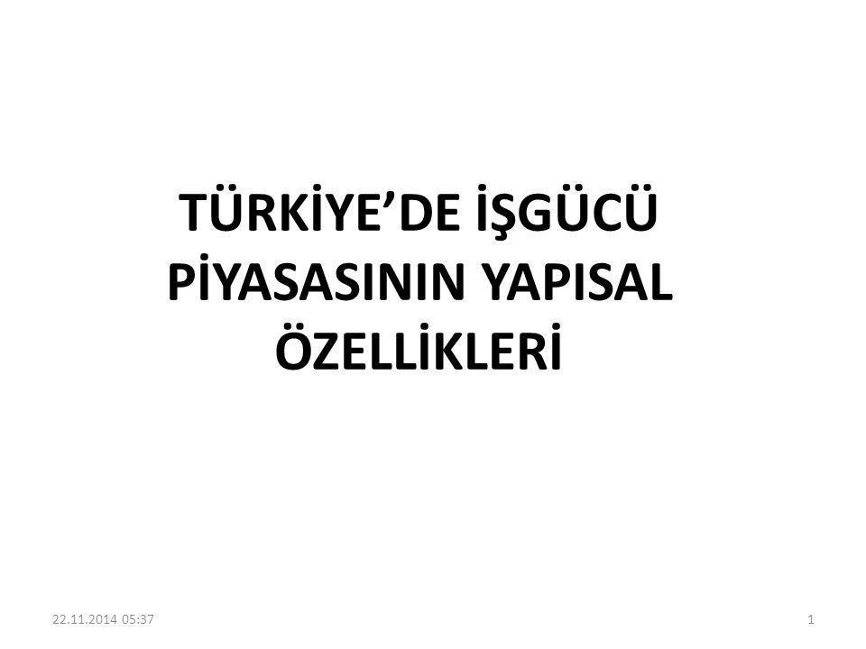 TÜRKİYE'DE İŞGÜCÜ PİYASASININ YAPISAL ÖZELLİKLERİ