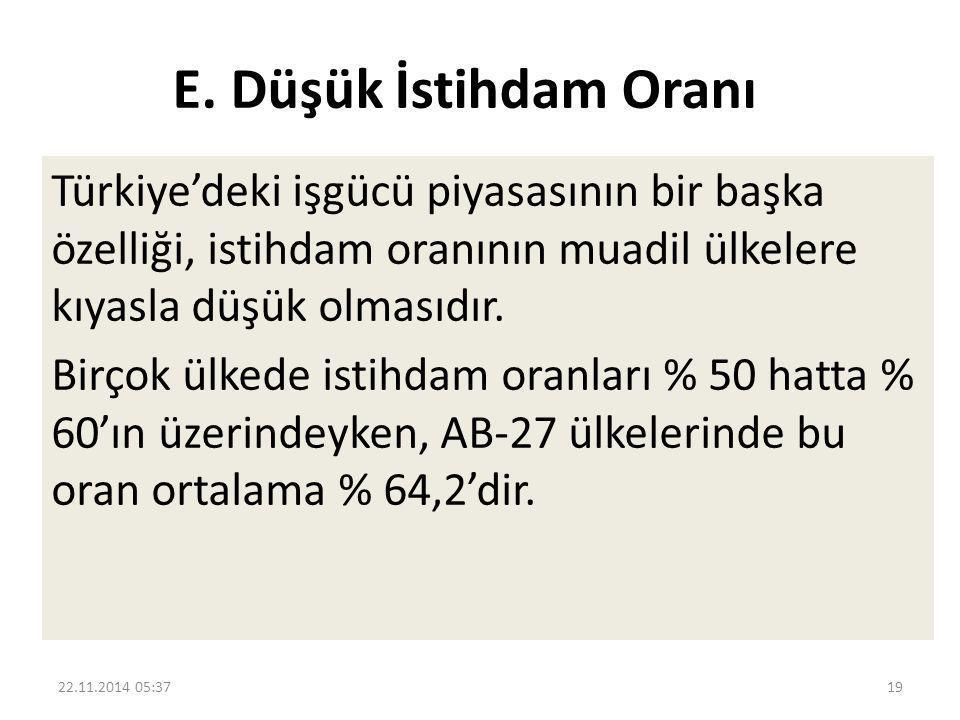 E. Düşük İstihdam Oranı Türkiye'deki işgücü piyasasının bir başka özelliği, istihdam oranının muadil ülkelere kıyasla düşük olmasıdır.