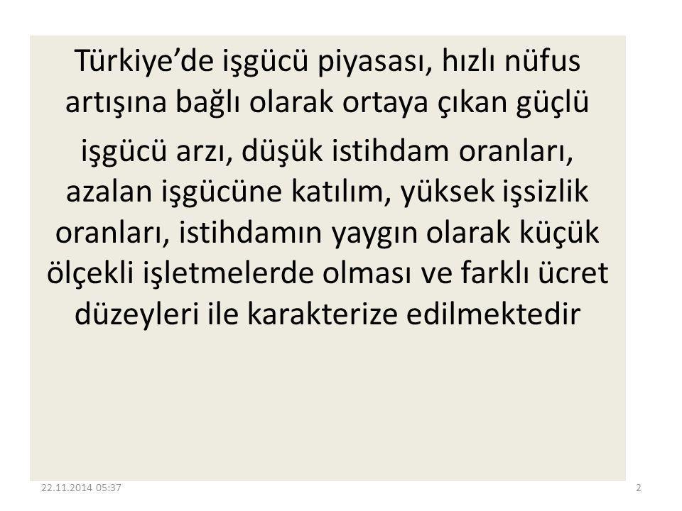 Türkiye'de işgücü piyasası, hızlı nüfus artışına bağlı olarak ortaya çıkan güçlü