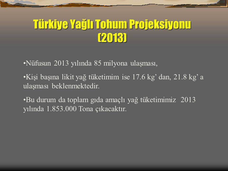 Türkiye Yağlı Tohum Projeksiyonu (2013)