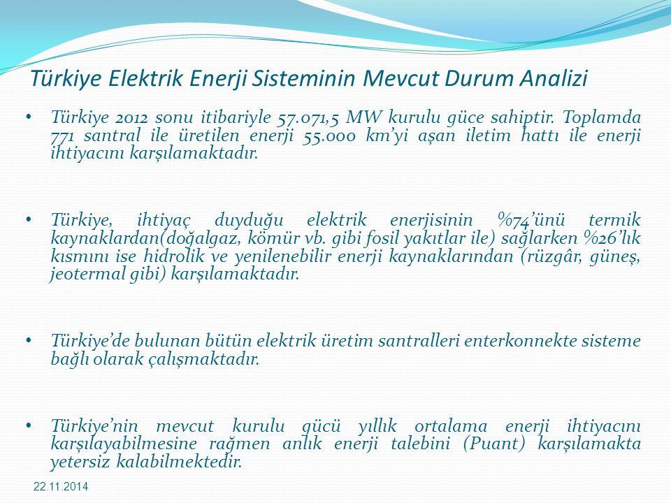 Türkiye Elektrik Enerji Sisteminin Mevcut Durum Analizi