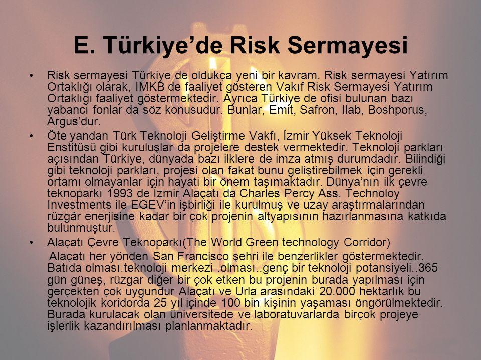 E. Türkiye'de Risk Sermayesi