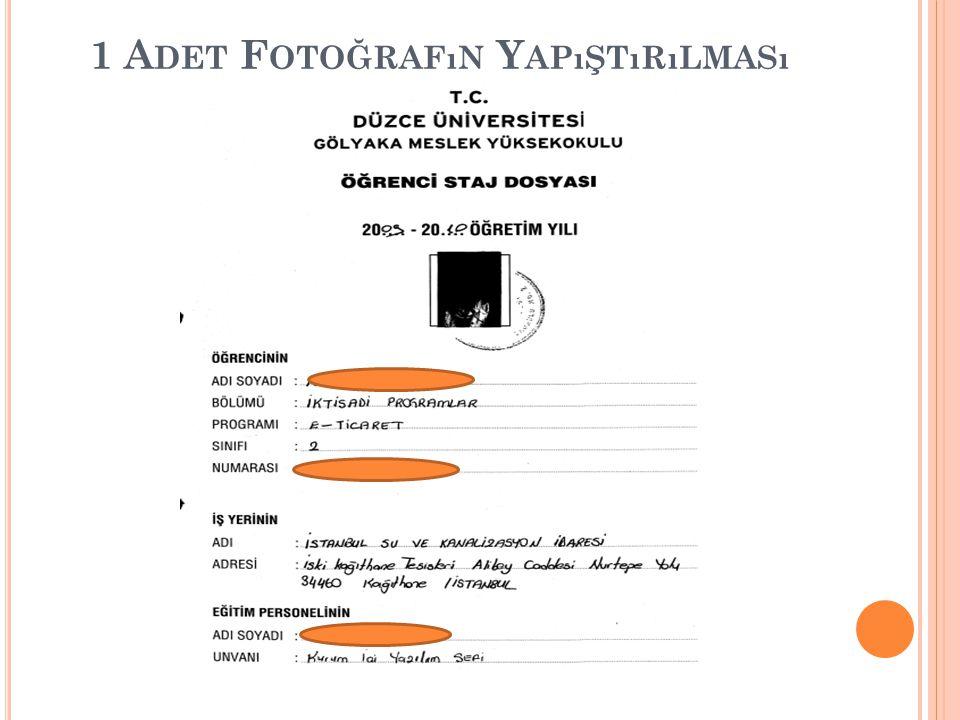 1 Adet Fotoğrafın Yapıştırılması