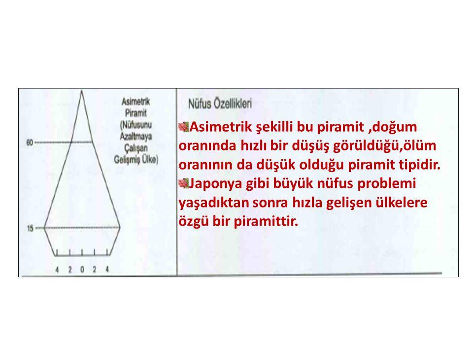 Asimetrik şekilli bu piramit ,doğum oranında hızlı bir düşüş görüldüğü,ölüm oranının da düşük olduğu piramit tipidir.