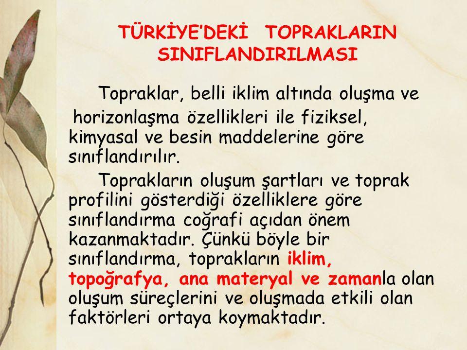 TÜRKİYE'DEKİ TOPRAKLARIN SINIFLANDIRILMASI