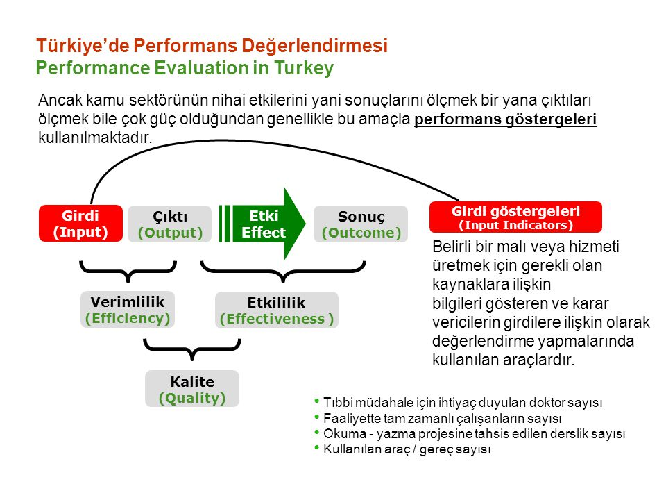 Türkiye'de Performans Değerlendirmesi Performance Evaluation in Turkey