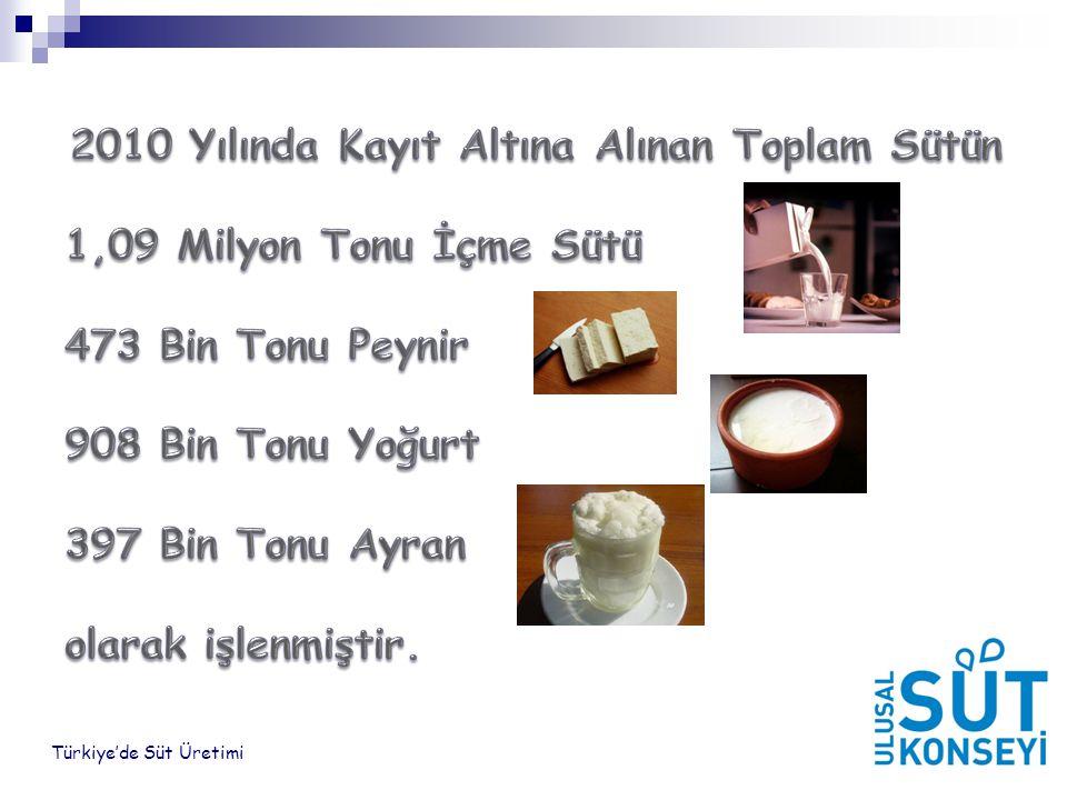 2010 Yılında Kayıt Altına Alınan Toplam Sütün