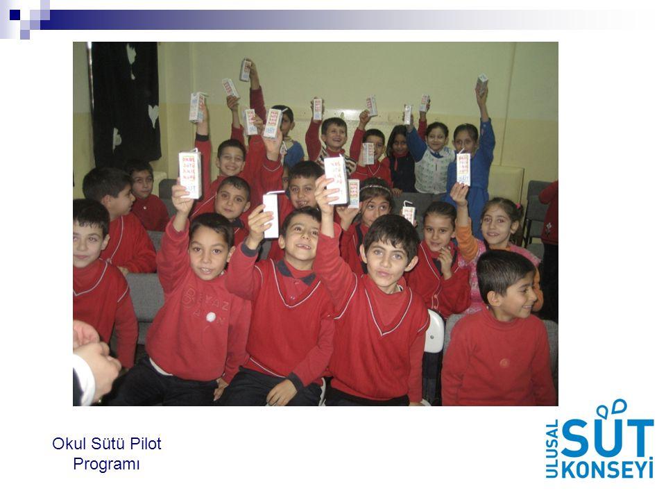 Okul Sütü Pilot Programı