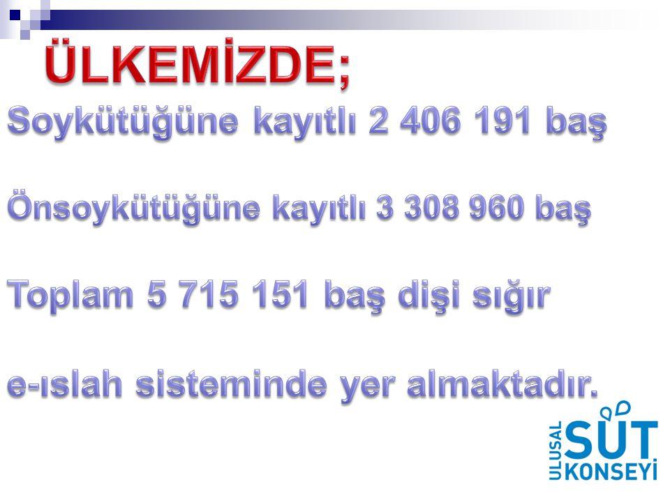 ÜLKEMİZDE; Soykütüğüne kayıtlı 2 406 191 baş