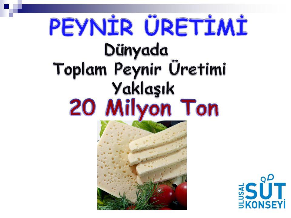 PEYNİR ÜRETİMİ 20 Milyon Ton