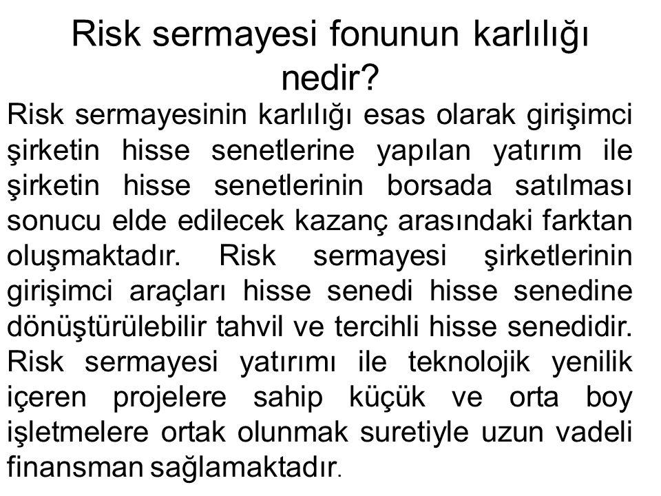 Risk sermayesi fonunun karlılığı nedir