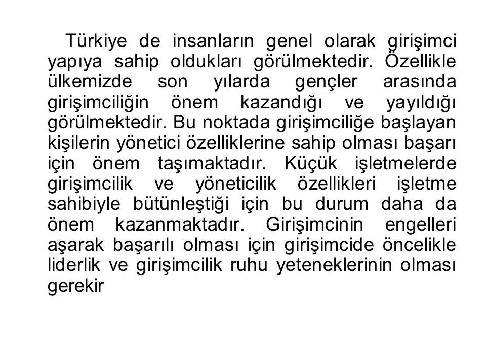 Türkiye de insanların genel olarak girişimci yapıya sahip oldukları görülmektedir.