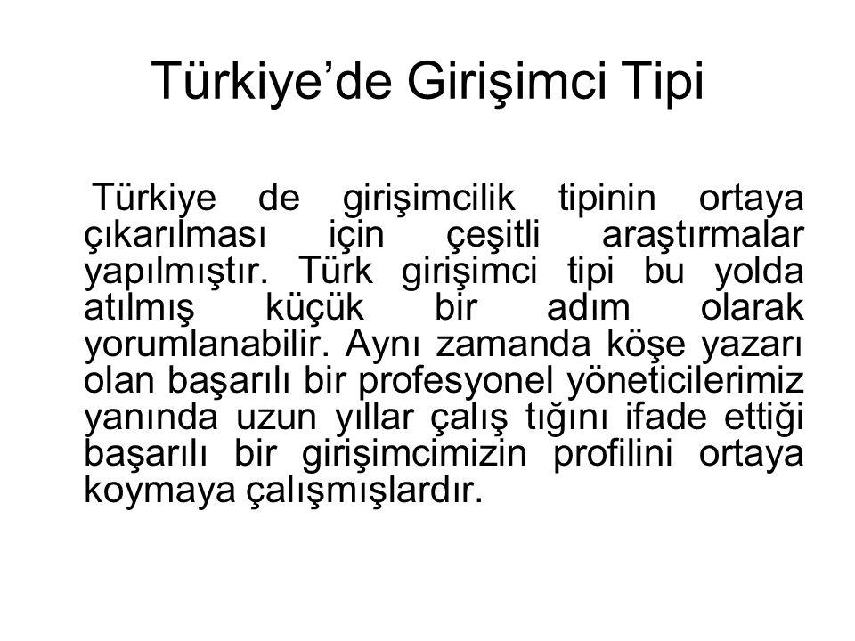 Türkiye'de Girişimci Tipi