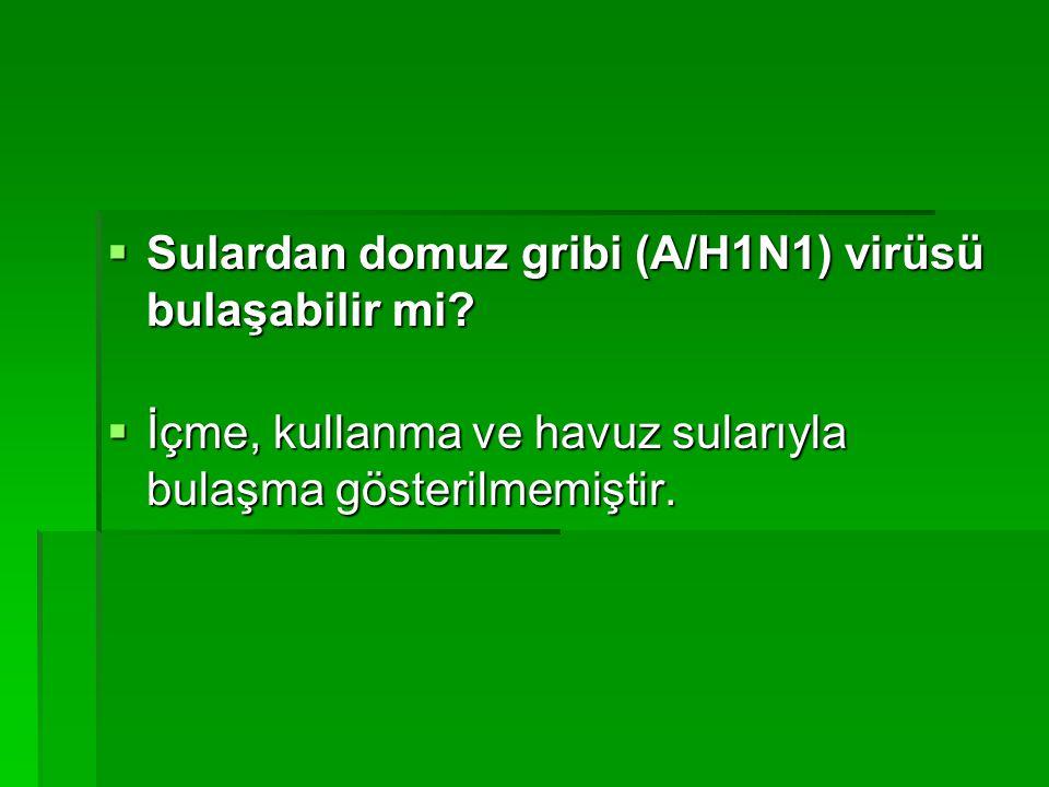 Sulardan domuz gribi (A/H1N1) virüsü bulaşabilir mi