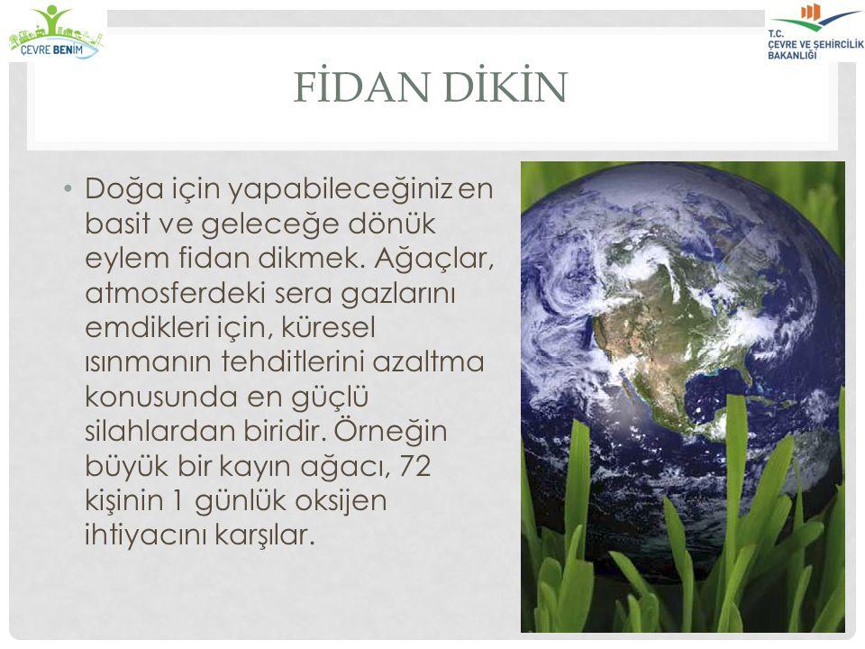 FİDAN DİKİN