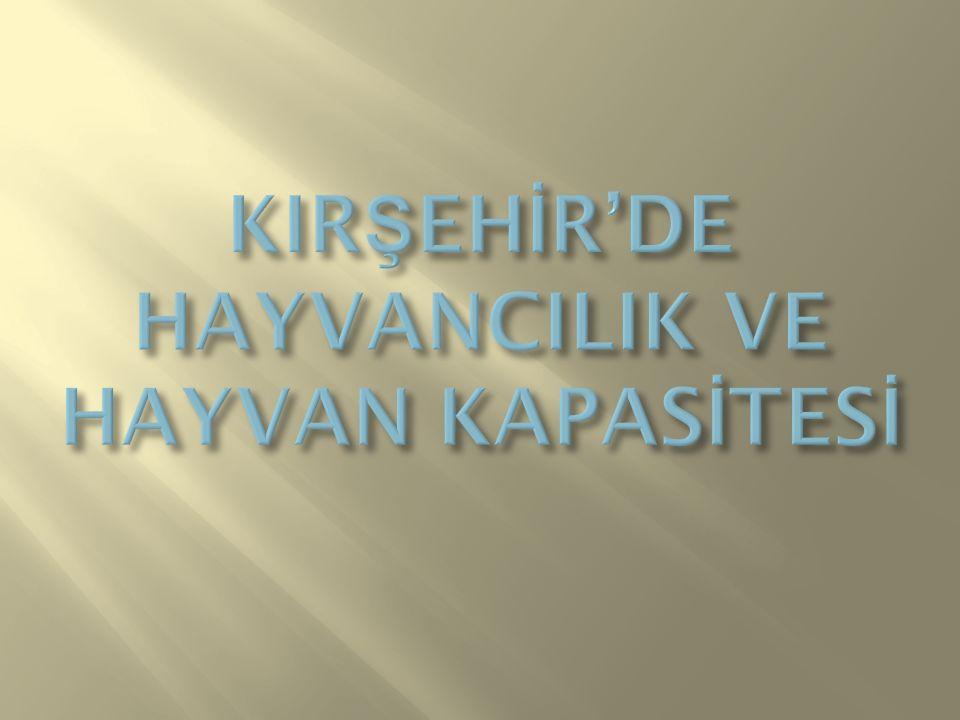 KIRŞEHİR'DE HAYVANCILIK VE HAYVAN KAPASİTESİ