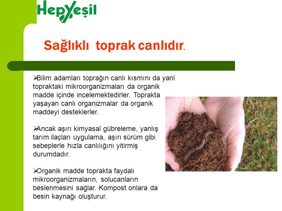 Sağlıklı toprak canlıdır.