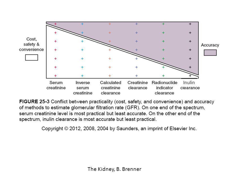 Inulin The Kidney, B. Brenner
