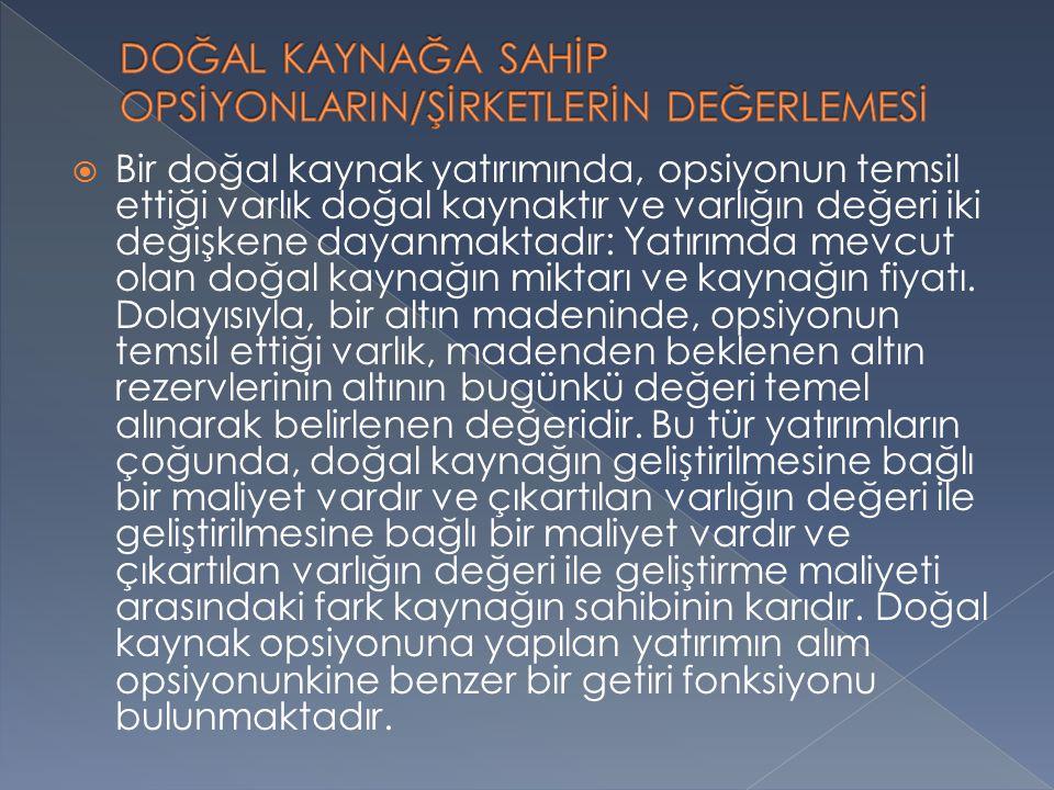 DOĞAL KAYNAĞA SAHİP OPSİYONLARIN/ŞİRKETLERİN DEĞERLEMESİ