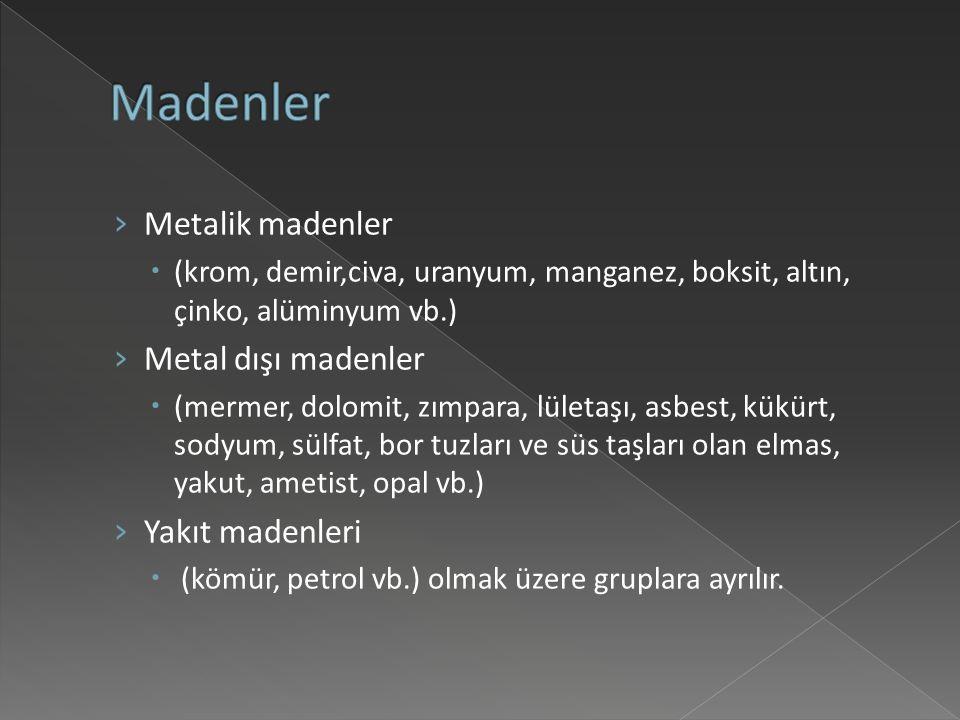 Madenler Metalik madenler Metal dışı madenler Yakıt madenleri