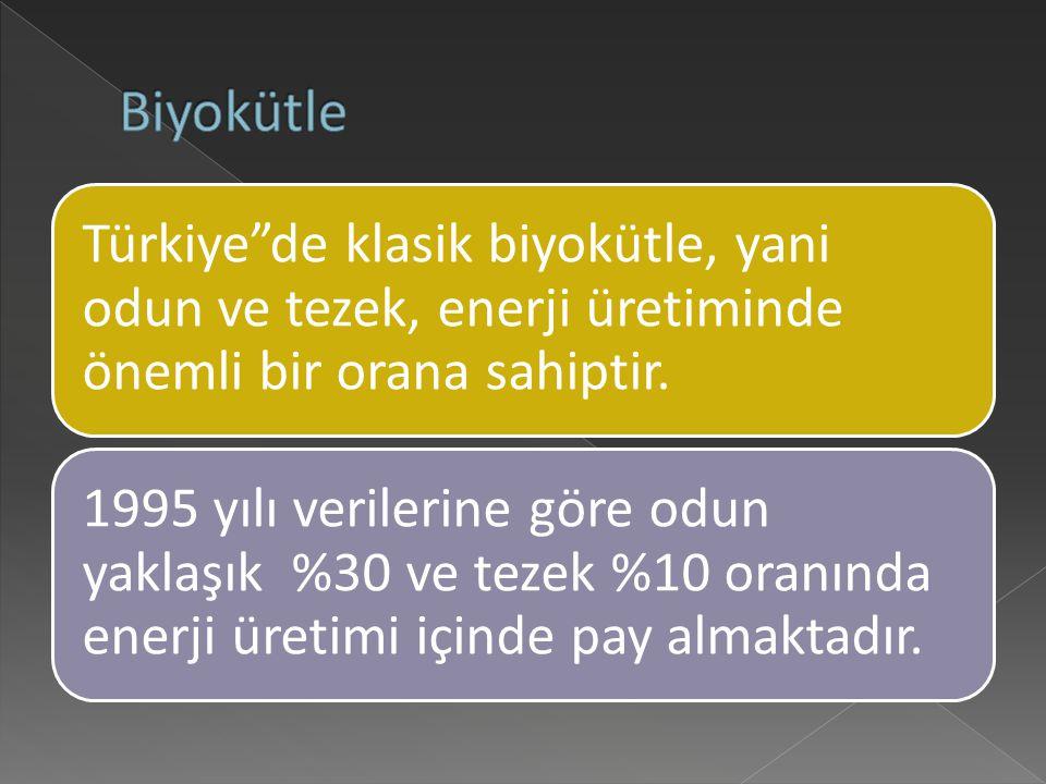 Biyokütle Türkiye de klasik biyokütle, yani odun ve tezek, enerji üretiminde önemli bir orana sahiptir.