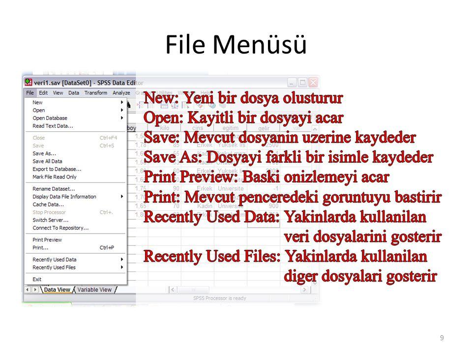 SPSS Dosya Türleri - 1 Veri (Data) dosyası (.sav): Üzerinde işlem yapılacak verileri içerir.