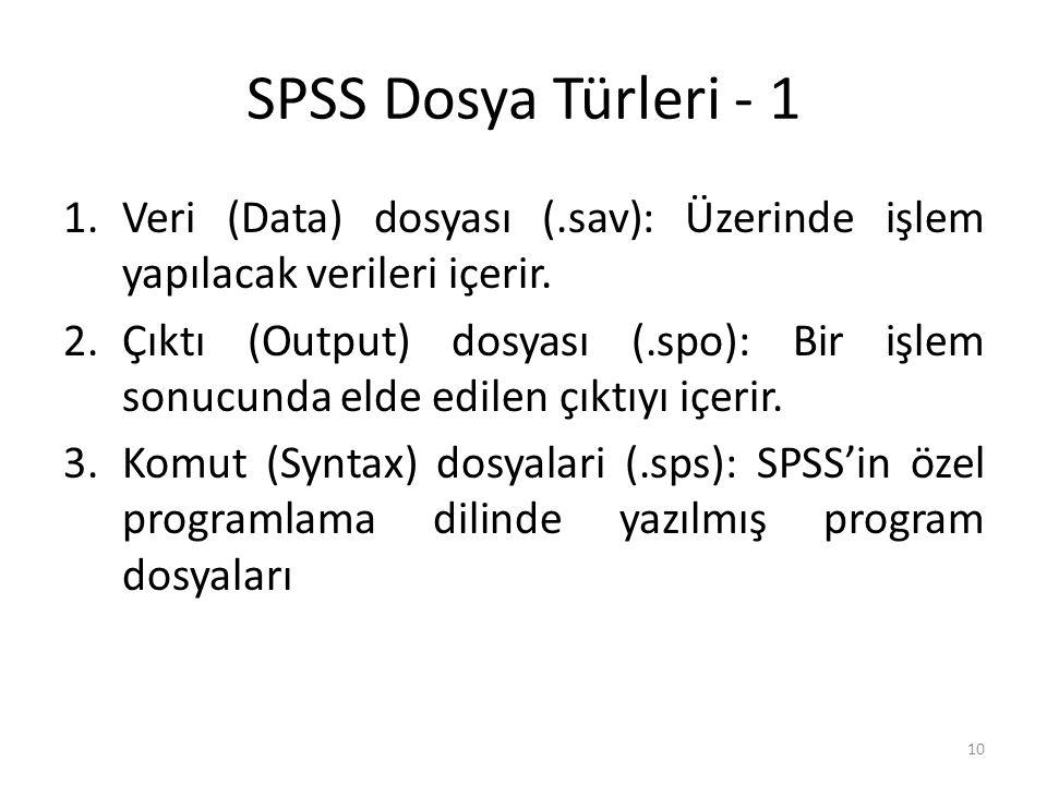SPSS Dosya Türleri - 2 2. Çıktı dosyası 1. Veri dosyası