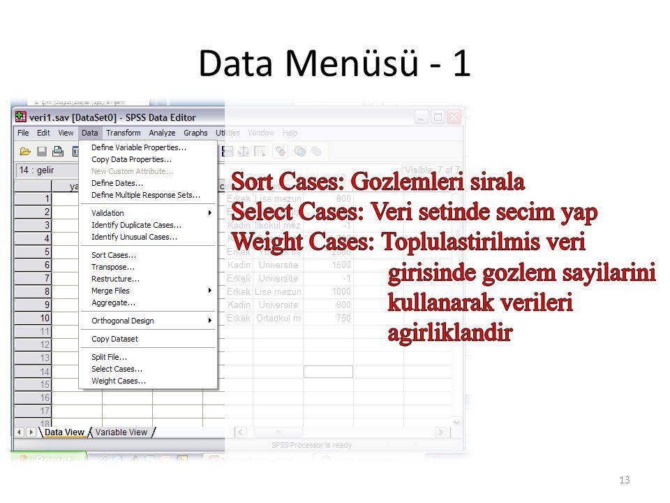 Data Menüsü – 2 (Sort Cases)