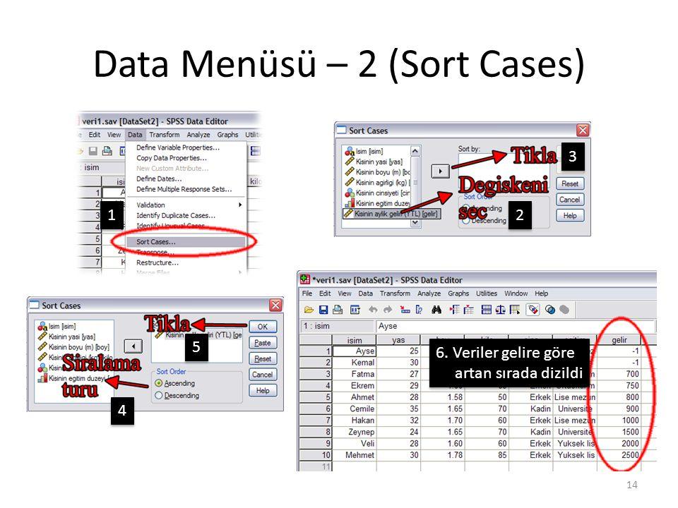 Data Menüsü – 3 (Sort Cases)
