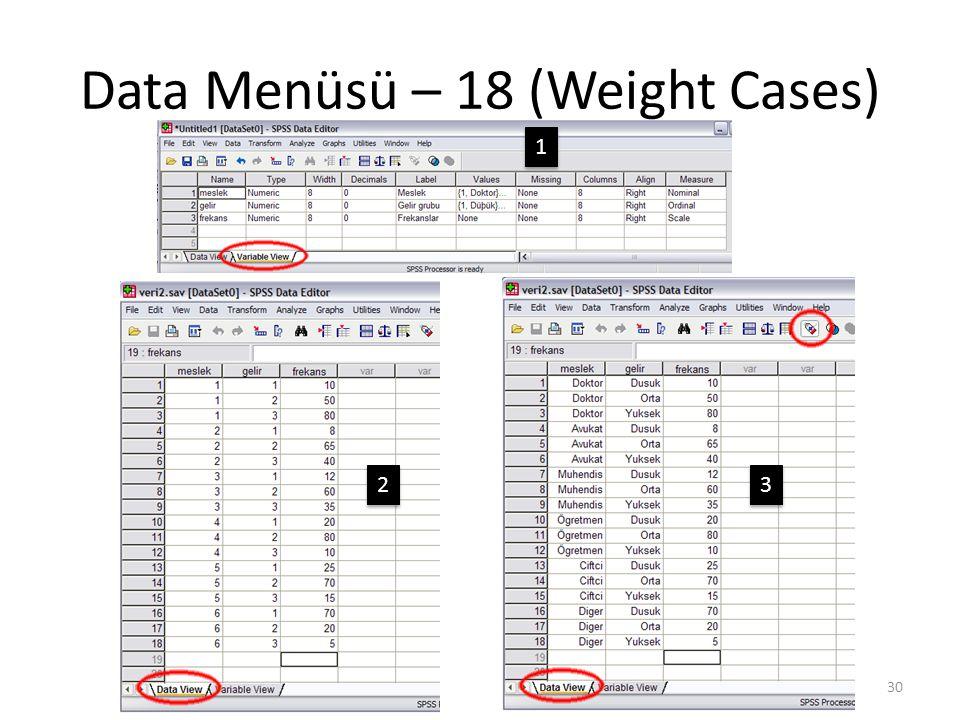 Data Menüsü – 19 (Weight Cases)