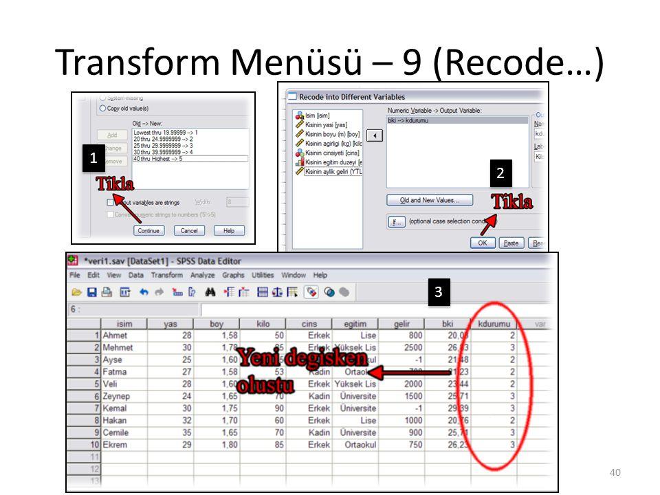 Transform Menüsü – 10 (Recode…)