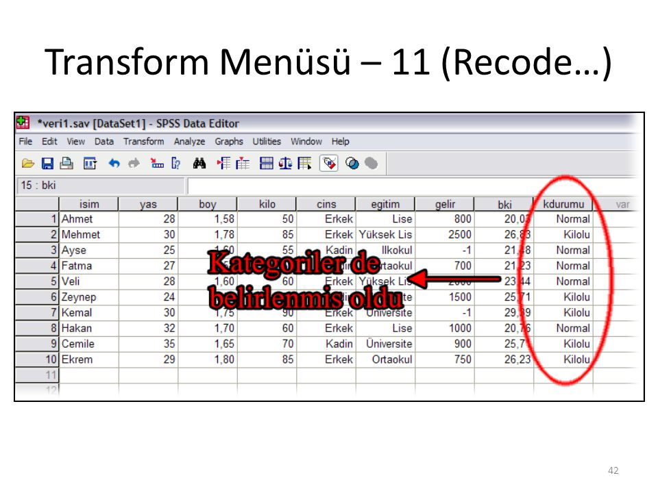 Transform Menüsü – 12 (Recode…)