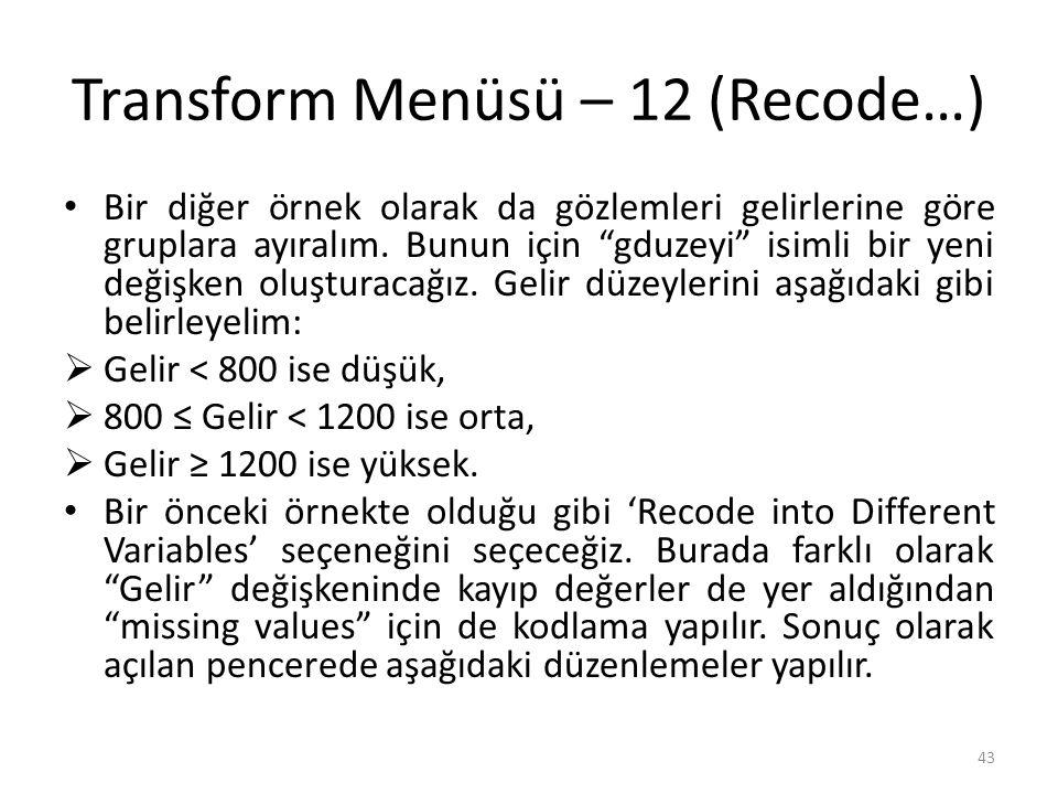Transform Menüsü – 13 (Recode…)
