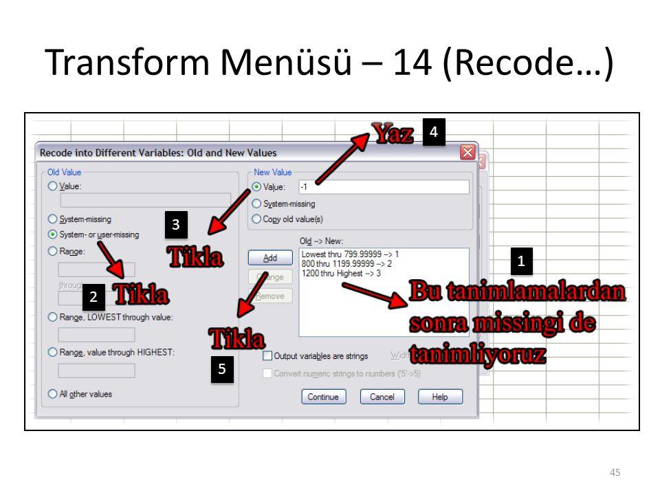 Transform Menüsü – 15 (Recode…)