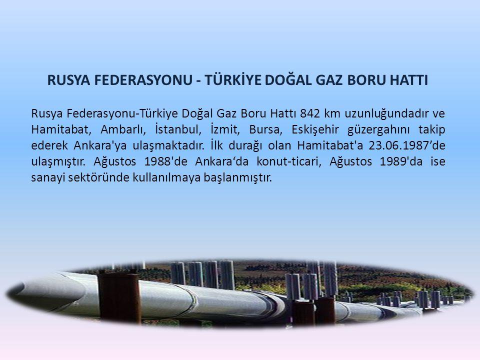 RUSYA FEDERASYONU - TÜRKİYE DOĞAL GAZ BORU HATTI