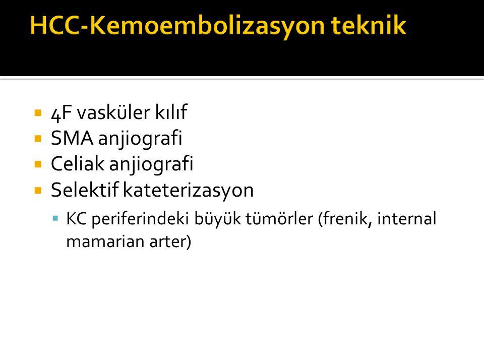 HCC-Kemoembolizasyon teknik