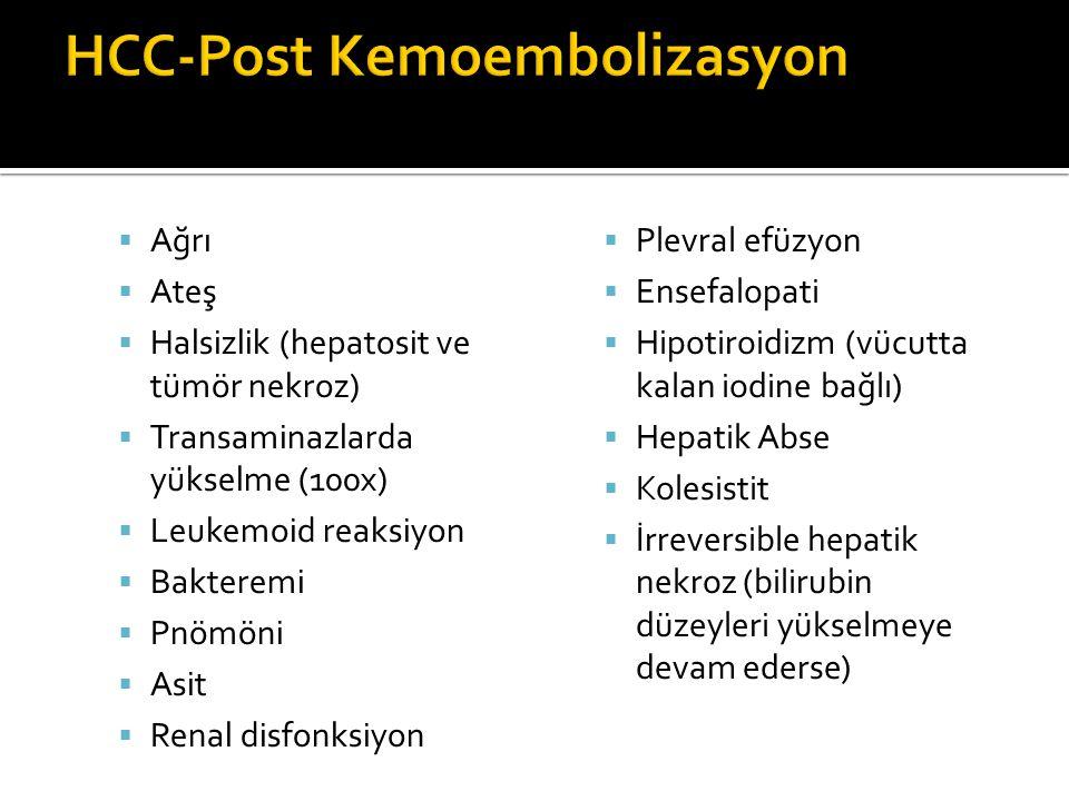 HCC-Post Kemoembolizasyon