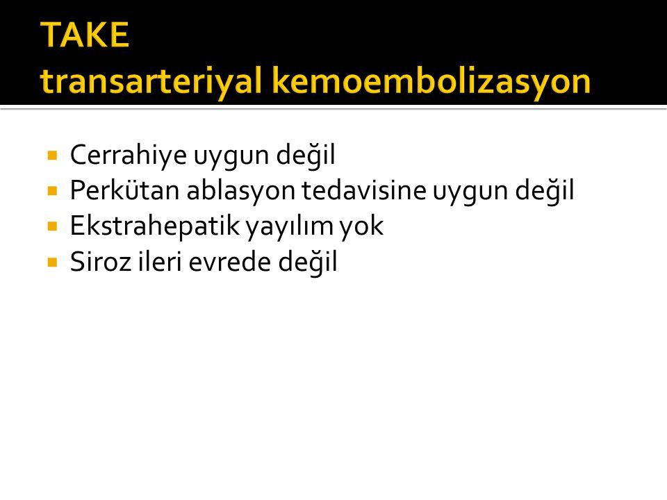 TAKE transarteriyal kemoembolizasyon