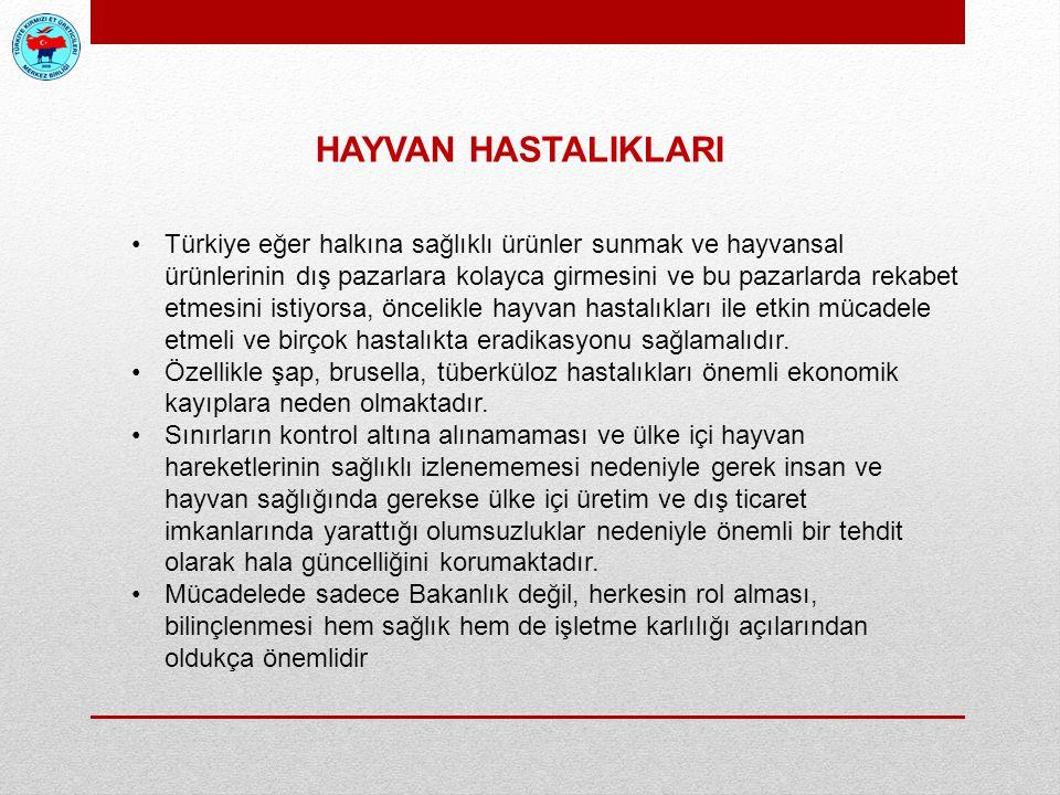 HAYVAN HASTALIKLARI