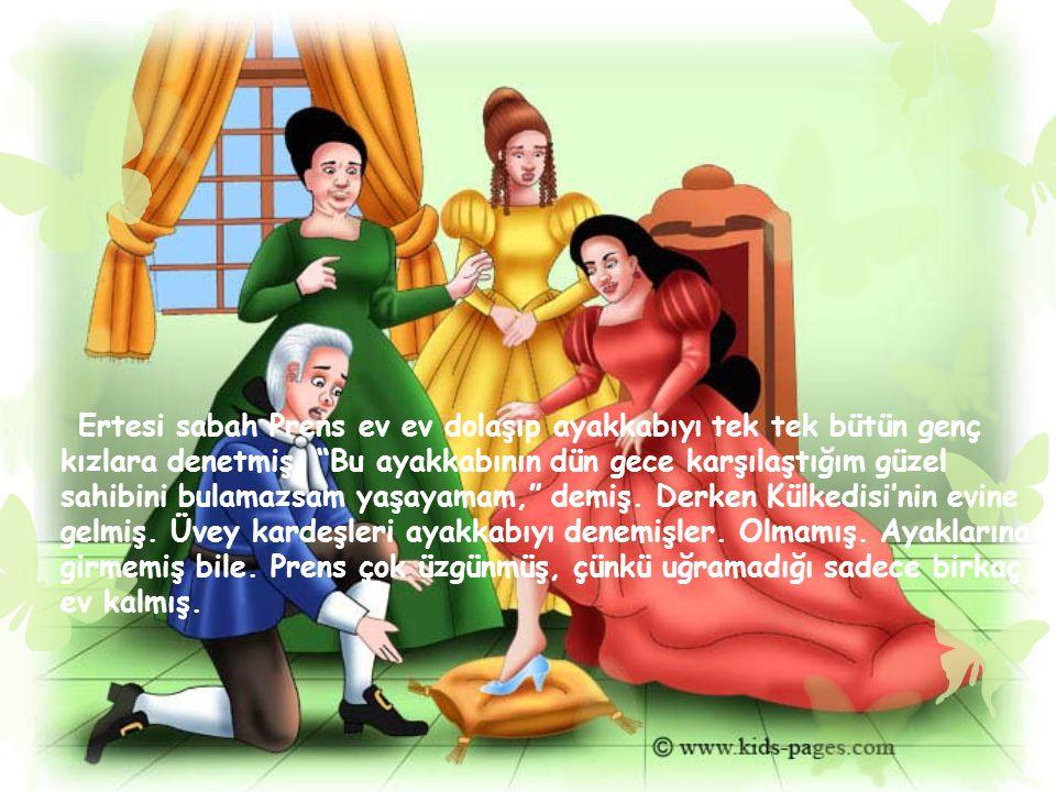 Ertesi sabah Prens ev ev dolaşıp ayakkabıyı tek tek bütün genç kızlara denetmiş.